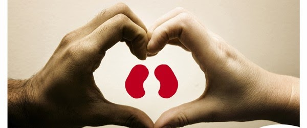 HandHeartKidneys2011-600x250